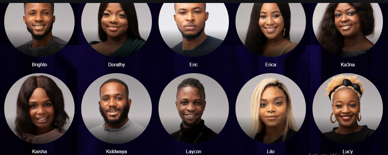 Meet the 2020 BBNaija Lockdown housemates