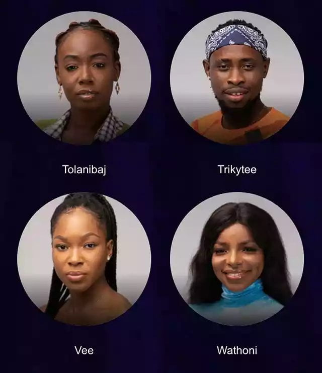 bbnaija 2020 housemates picture